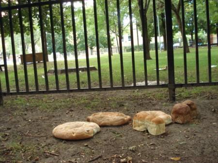 Park bread.