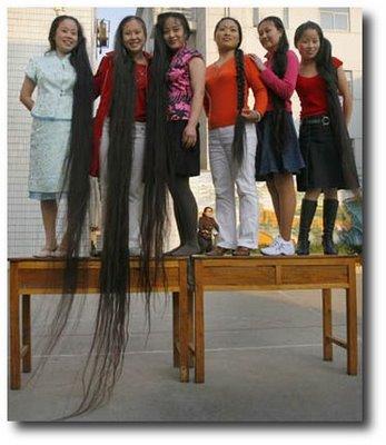 الشعر الطويل نعمة أو نقمة ؟